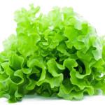 польза салата листового